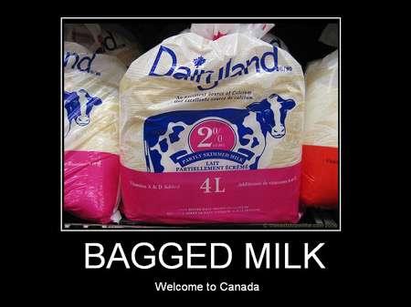 bagged
